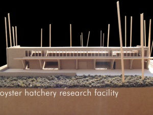 Architect's model of the future Oyster Research Hatchery at UNC-Wilmington
