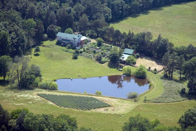 Aerial view of Bluebird Hill Farm.
